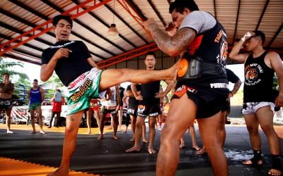 Muay thai Mississauga |Teep / push kick in focus